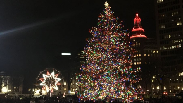 New Haven Tree Lighting: Live Coverage on NBC Connecticut
