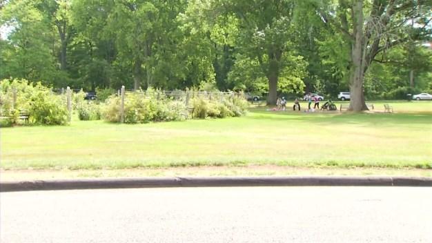 Visitors Brave Heat at Elizabeth Park
