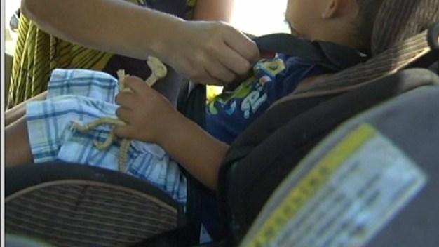 Outreach Program Aims to Reduce Hot Car Deaths