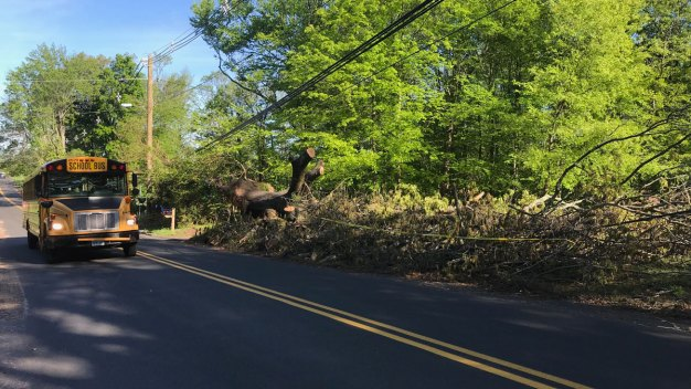 Wallingford Students Back in School After Microburst