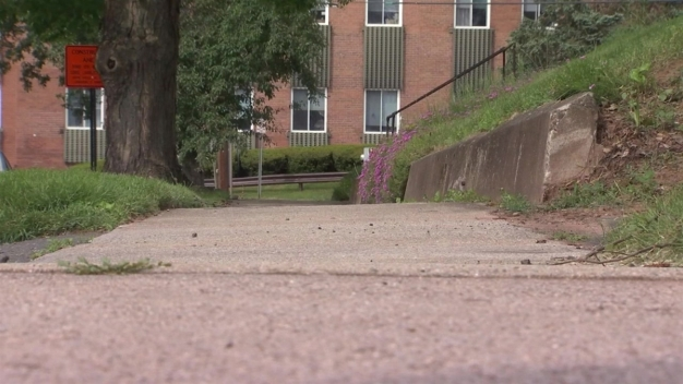 1-Year-Old Severely Injured in Wallingford Dog Attack