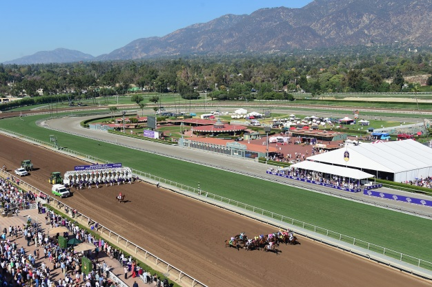 Another Horse Dies at Santa Anita, 26th Since December