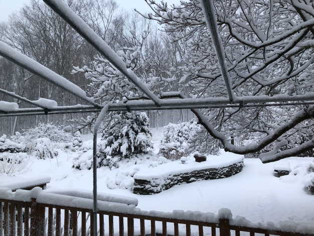 Your Photos: Saturday Snow in the Hills