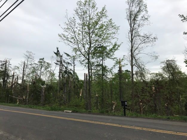 May 15, 2018 - Fairfield County Wind Damage