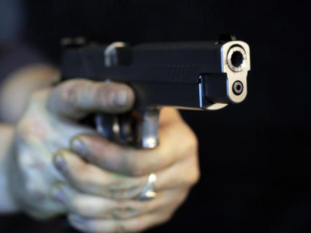 Handguns Found Hidden Near Hamden Playground