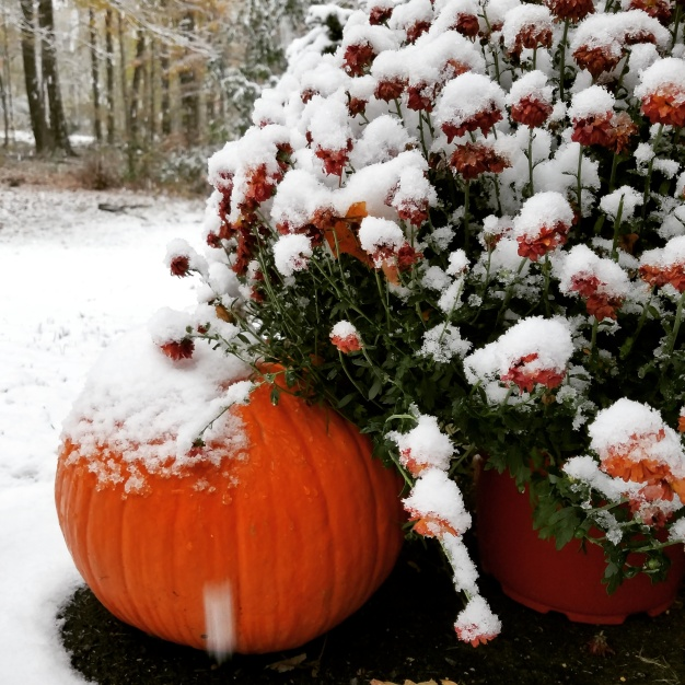Ryan's Take: Does a Snowy October Mean a Snowy Winter?