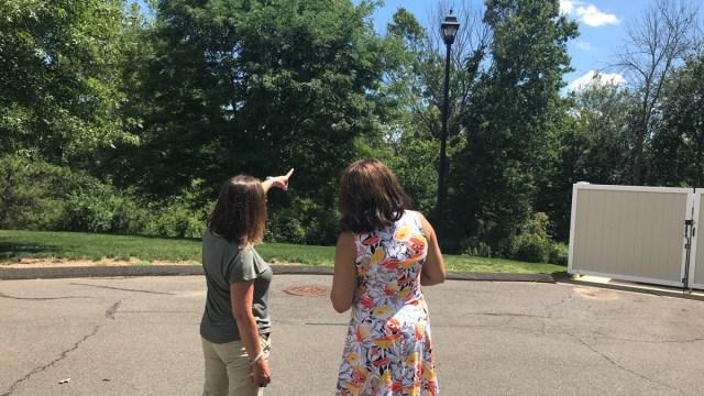 Meriden Neighbors Had Months-Long Light Pole Problem