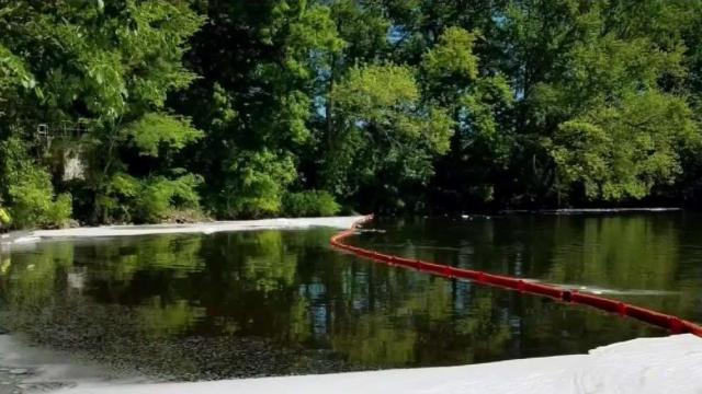 Tests Show Elevated PFAS Levels in Farmington River Fish