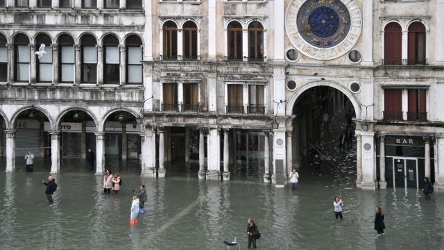 Historic Flooding Highlights Venice's Vulnerability