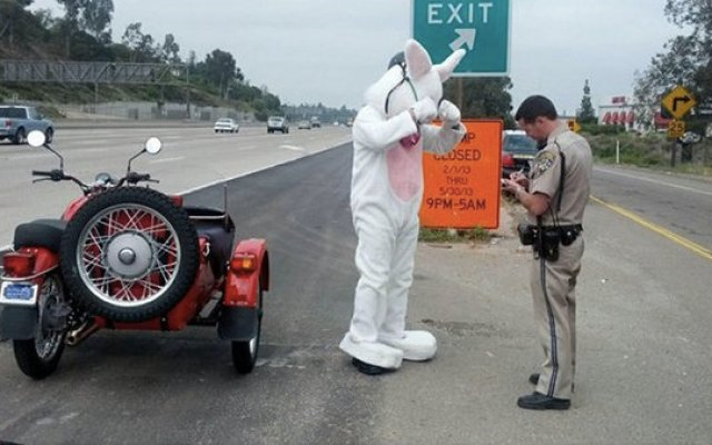 A motorcycle rider in an Easter bunny costume was pulled over by a California Highway Patrol officer Saturday March 30, 2013.