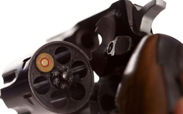 Doctors want to influence state gun laws.