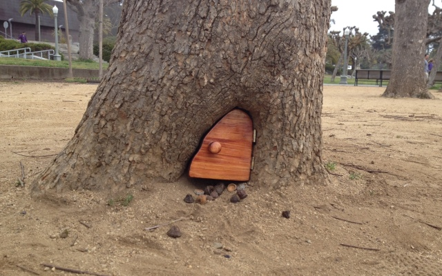 Doors are mysteriously being built into trees at the Concourse in San Francisco's Golden Gate Park.