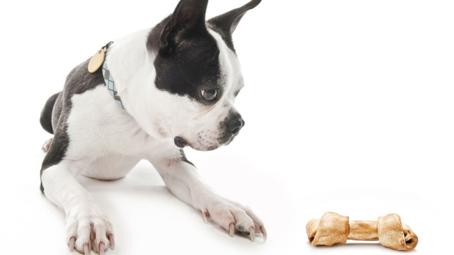 FDA Proposes Rules to Make Animal Food Safer