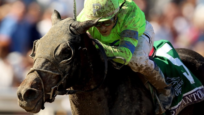 Filly Ria Antonia Might Run Against Males in Preakness Stakes