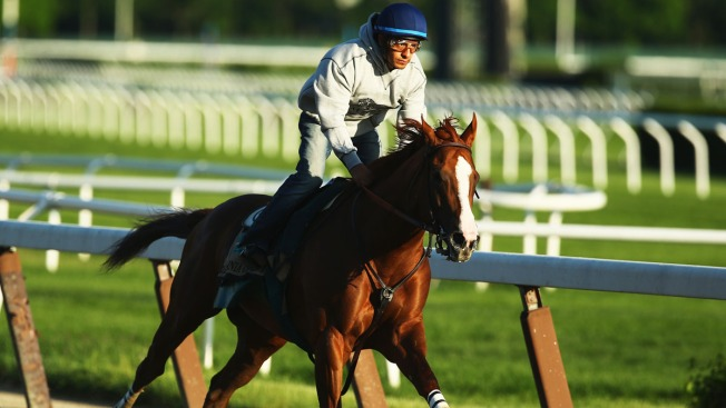 California Chrome Revs Up Bid for Triple Crown