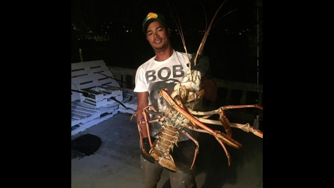 Monster Lobster Caught in Bermuda After Hurricane