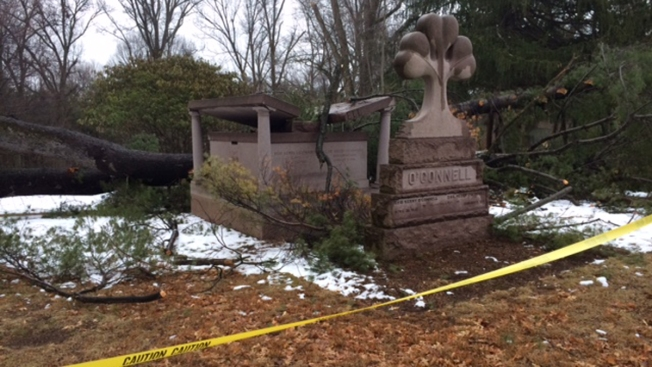 Downed Tree Damages Couple's Mausoleum in Hartford