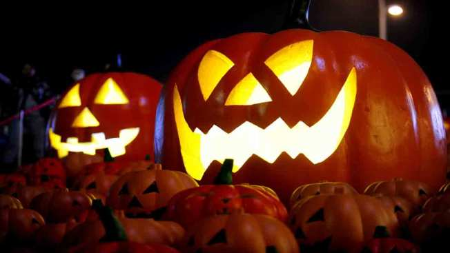 Haunted House Party: Tips for Spooky Halloween Bash