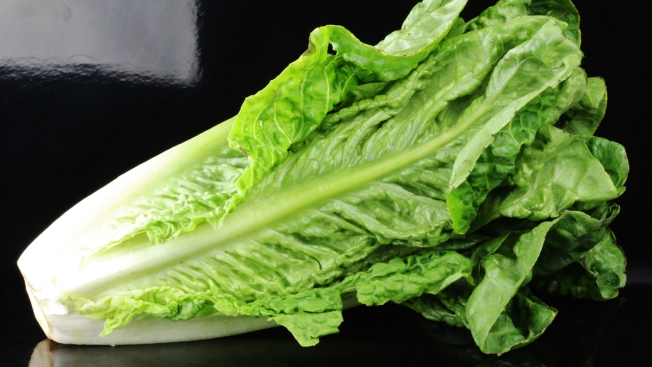 Romaine Lettuce Outbreak Grows: 172 Sick in 32 States