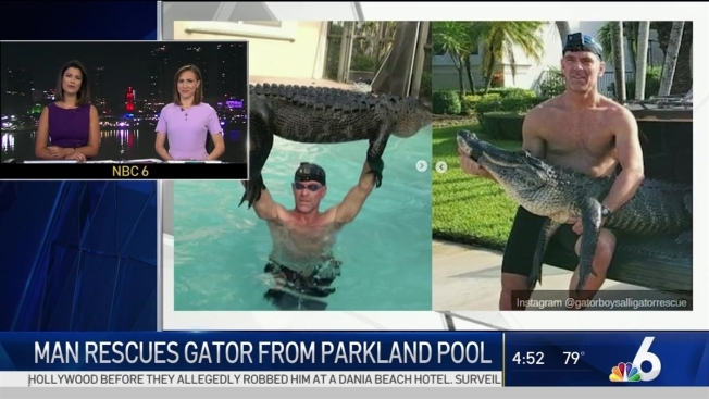 Man Rescues Nearly 9-Foot Gator from Parkland Pool