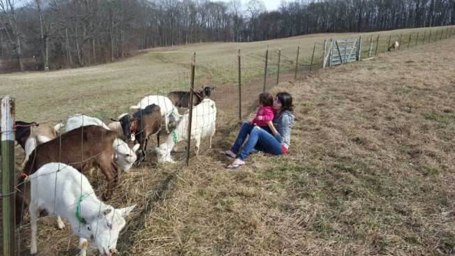 Infected Manchester Mother First to Speak About E. Coli Outbreak From Lebanon Goat Farm