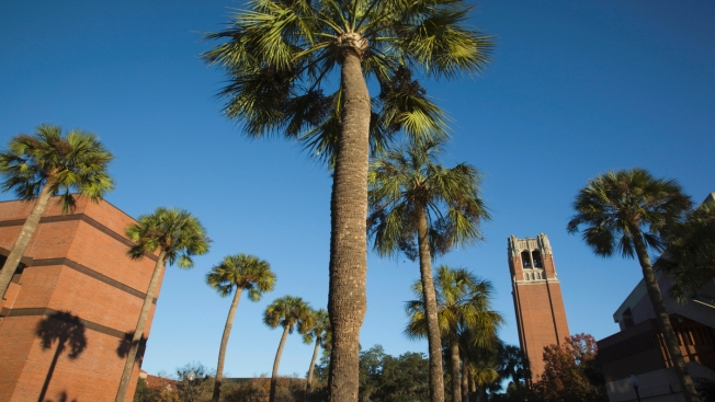 Florida's Urinating Man Strikes Again