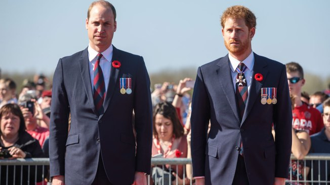 Prince William and Prince Harry to attend special service at Diana's grave