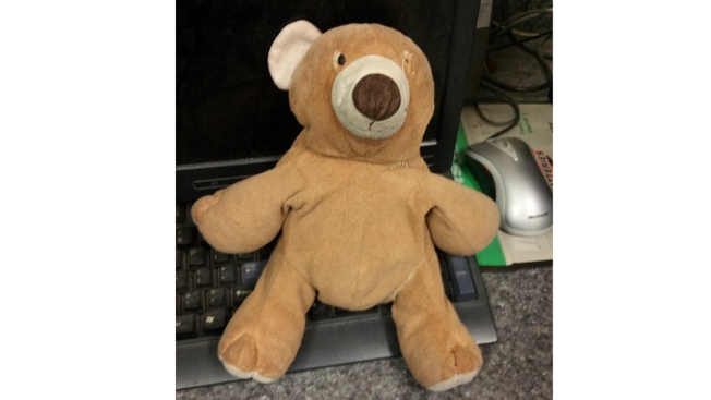 NJ Turnpike Reuniting Boy With Beloved Teddy Bear Lost Along Highway