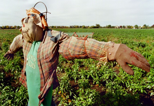 9/28: From Scarecrows to Breaking the Fast