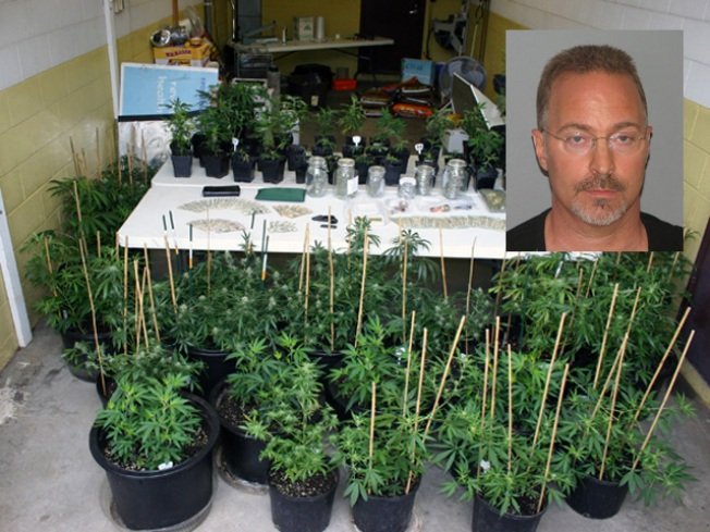 Berlin Contractor Busted for Pot Growing Factory: Cops