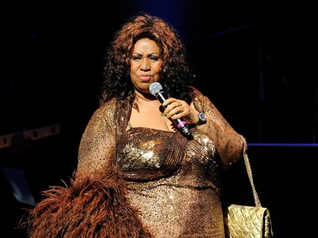 Aretha Franklin Breaks Ribs in Fall, Will Miss Brooklyn Concerts