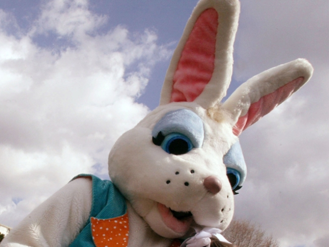Hartford Will Be Hopping Easter Weekend