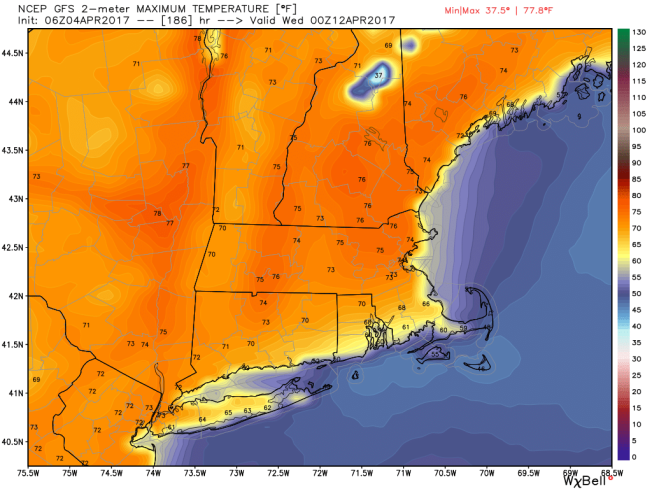Afternoon Forecast For May 20
