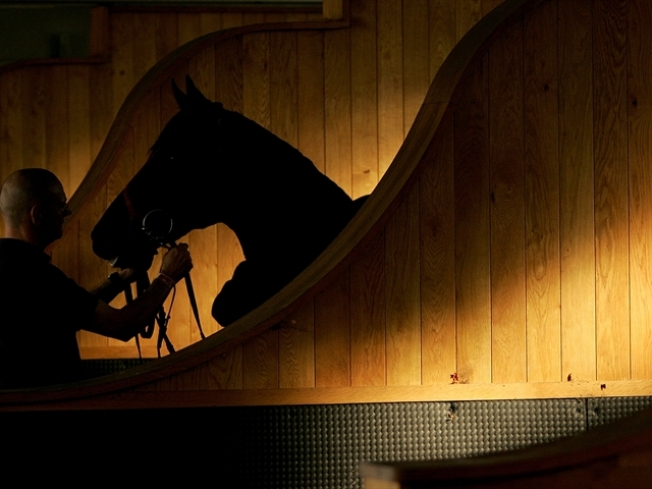 Former Student Accuses Equestrian Teacher of Rape