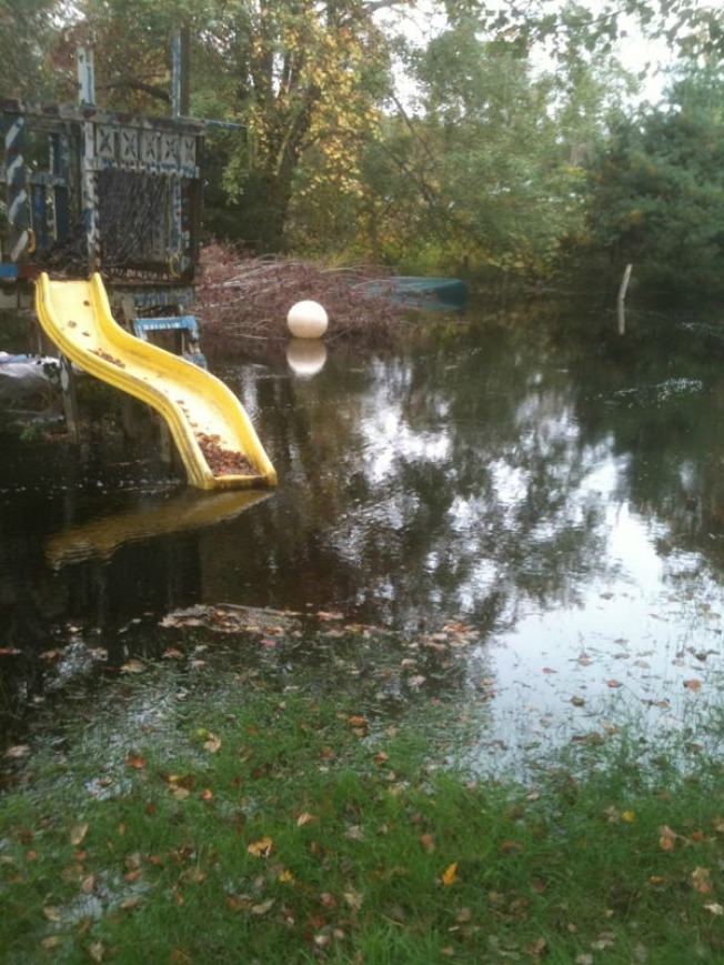 Beaver Dam Causes Flooding