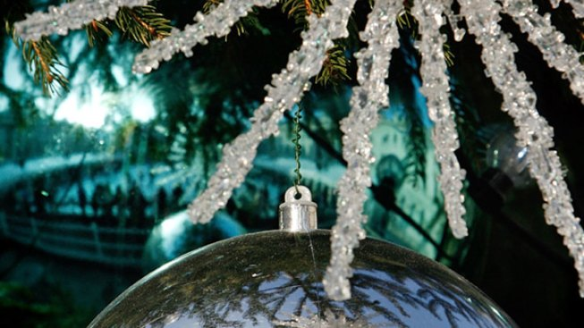 Police Nab Suspect in Christmas Tree Theft