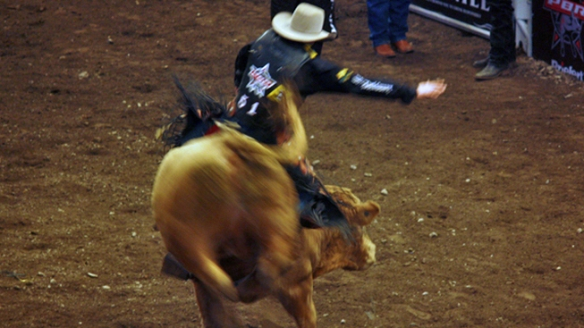 Bull Riders Mosey Over to Hartford