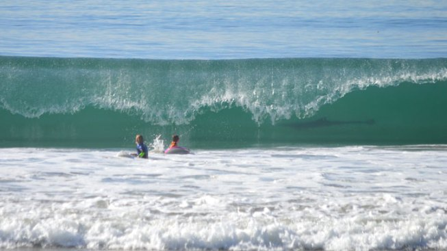 "Possible Shark ""Photobombs"" SoCal Surfers"