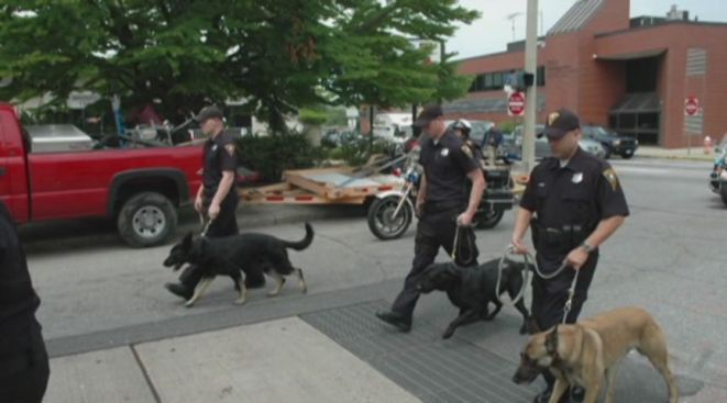 City Council to Decide Fate of New London K-9 Unit