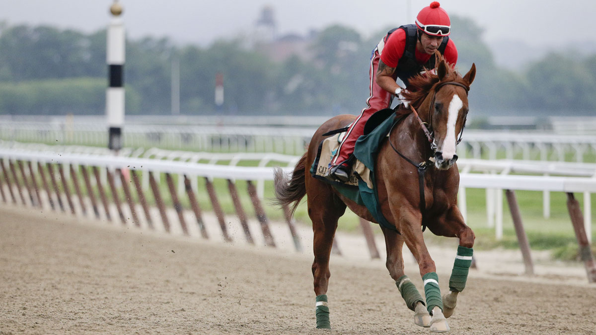 California Chrome gallops around the track with exercise rider Willie Delgado up during a workout at Belmont Park on Wednesday. The Kentucky Derby and Preakness Stakes winner will try to become the first Triple Crown winner since Affirmed in 1978 on Saturday. You may not know the first thing about racing — but here are some ways to fake it, at least for the big moment at Belmont.