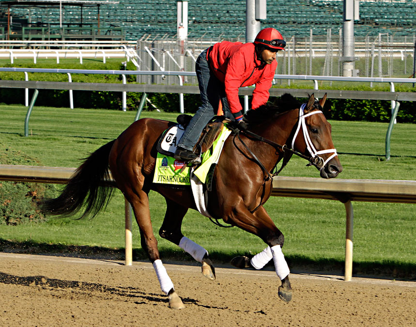 Exercise rider Carlos Cano gallops Kentucky Derby hopeful Itsaknockout at Churchill Downs. The horse is one of five that could be good bets for those rooting for an underdog.
