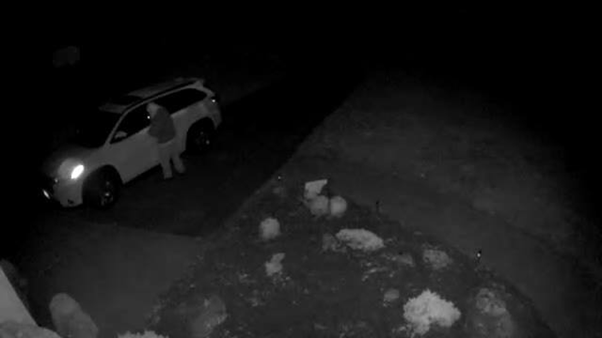 A surveillance image of a suspect attempting to enter cars parked in driveways in Colchester overnight.