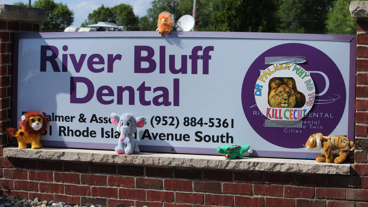 Protesters place stuffed animals on the sign of Dr. Walter Palmer's River Bluff Dental Clinic to call attention to the alleged poaching of Cecil the lion on July 29, 2015 in Bloomington, Minnesota. According to reports, the 13-year-old lion was lured out of a national park in Zimbabwe and killed by Dr. Palmer, who had paid at least $50,000 for the hunt.