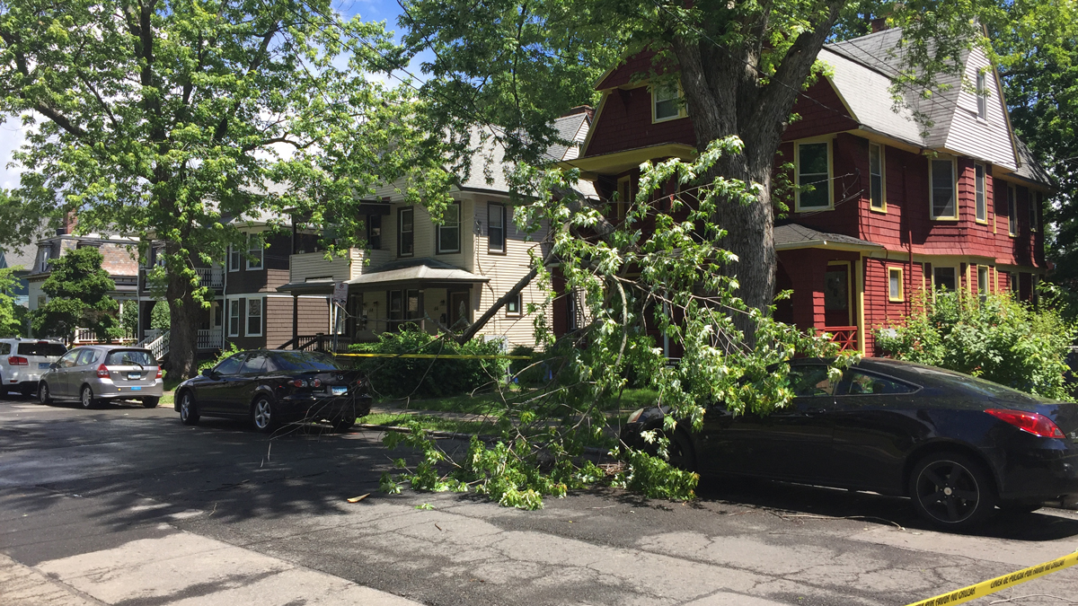 A tree branch came down on wires at 51 Tremont Street in Hartford Saturday.