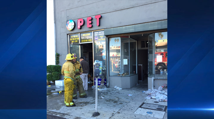 Some animals died amid smoky conditions in a Koreatown pet shop on Saturday, Jan. 17, 2015, according to LA fire officials.