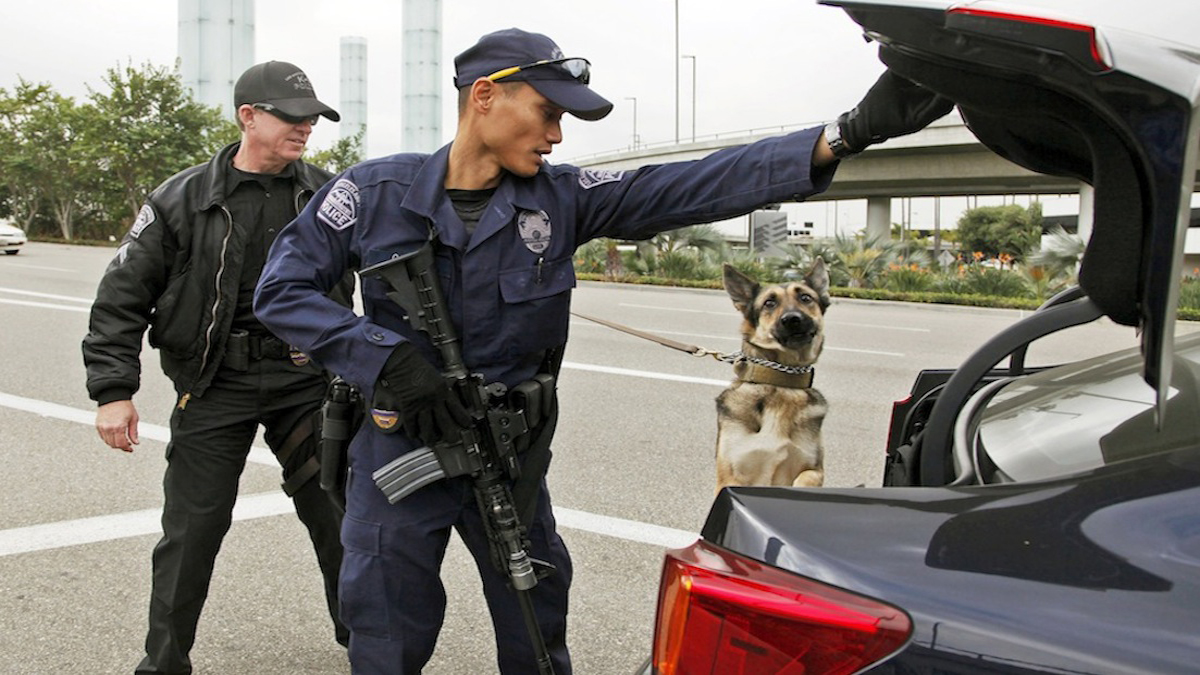 Agencies involved in the response to the fatal shooting at Los Angeles International Airport this month are awaiting the conclusion of various investigations before seeing what can be done to improve response. In this file photo,  Los Angeles Airport officer Daniel Keehne, left, and his dog Axa, and officer Fritz Corros inspect a car trunk at an access road checkpoint outside Los Angeles International Airport. TSA Officer Gerardo I. Hernandez was killed and two officers and one civilian wounded in the shooting at Terminal 3 Friday, Nov. 1. Operations at the airport were back to normal with a heightened security presence Monday, the first business day since the attack. (AP Photo/Nick Ut)