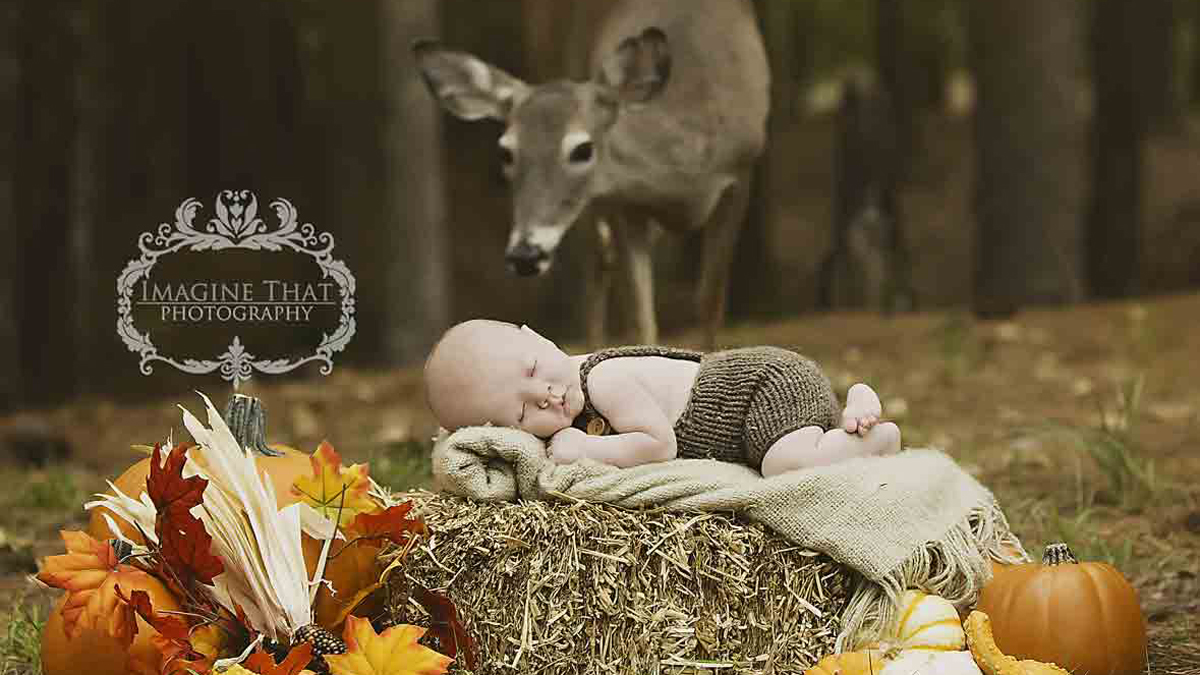 A viral photo captured during a photo shoot for a one-month-old infant features a deer named Maggie peacefully approaching the baby.