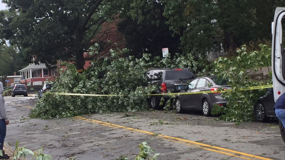 NEW LONDON, CONN. - Trees came down on cars parked on Pequot Avenue in New London during storms Wednesday. One person was killed after an unrooted tree came down on an occupied car in a driveway.