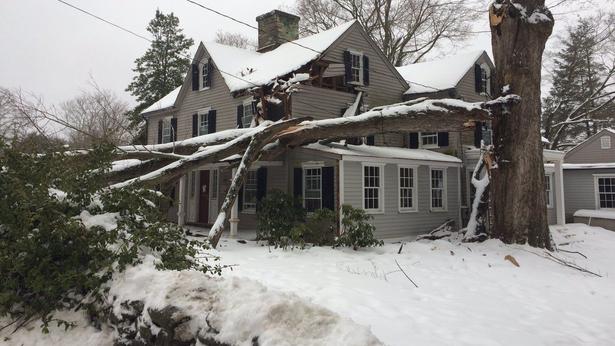A large tree fell on a home on Drum Hill Road in Wilton during Sunday's storm.