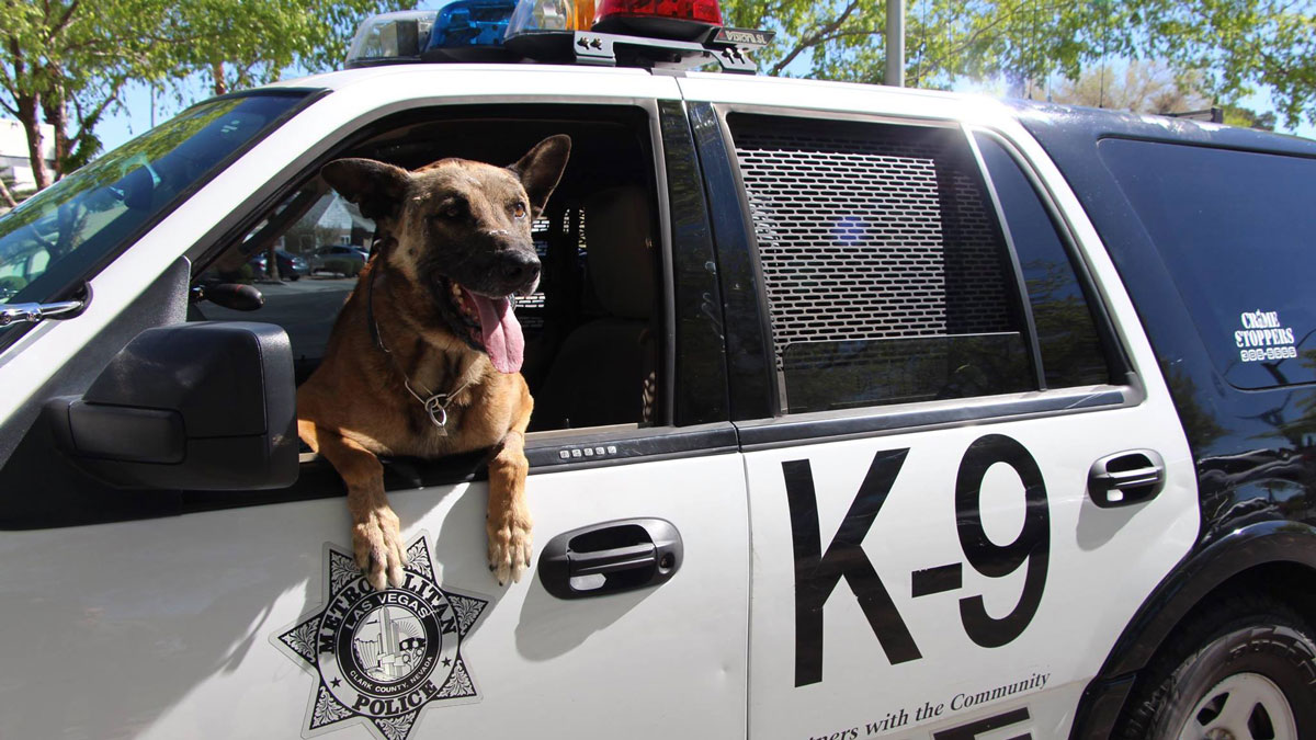 Las Vegas K-9 officer Nicky was shot and killed in the line of duty on March 31, 2016.